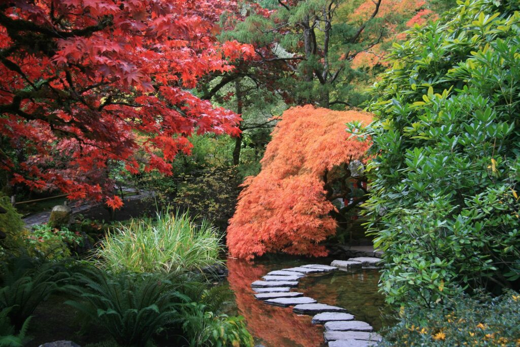 future_gardens_japonski_ogrod